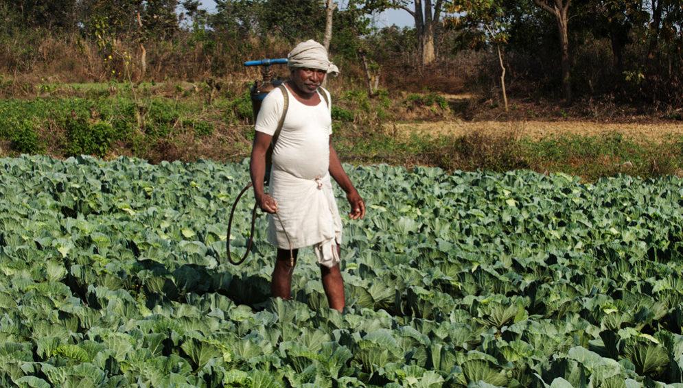 pesticide farmer - main