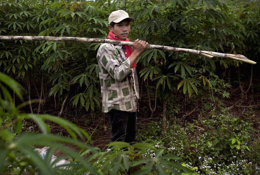 cambodia_bamboo_man_Patrick_Brown_panos