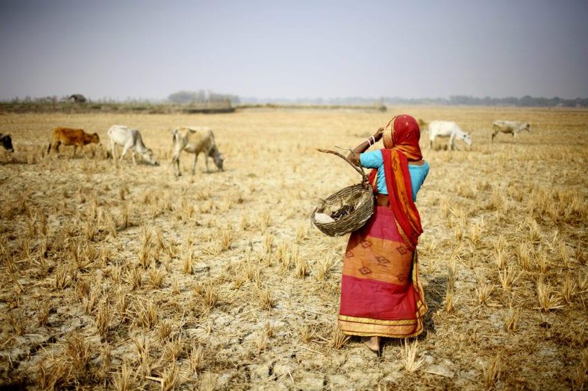 dry farm drought