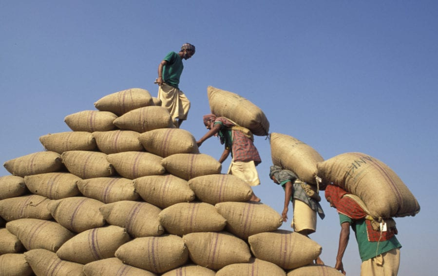 farmers stocking sack of crops