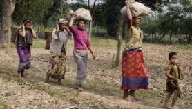 Indigenous communities enhance biodiversity