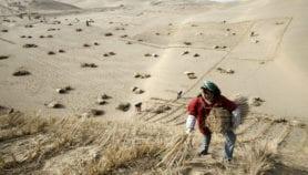 Drylands face a 4°C warming under Paris Agreement's goal