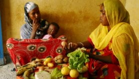 Ensuring food security for the future