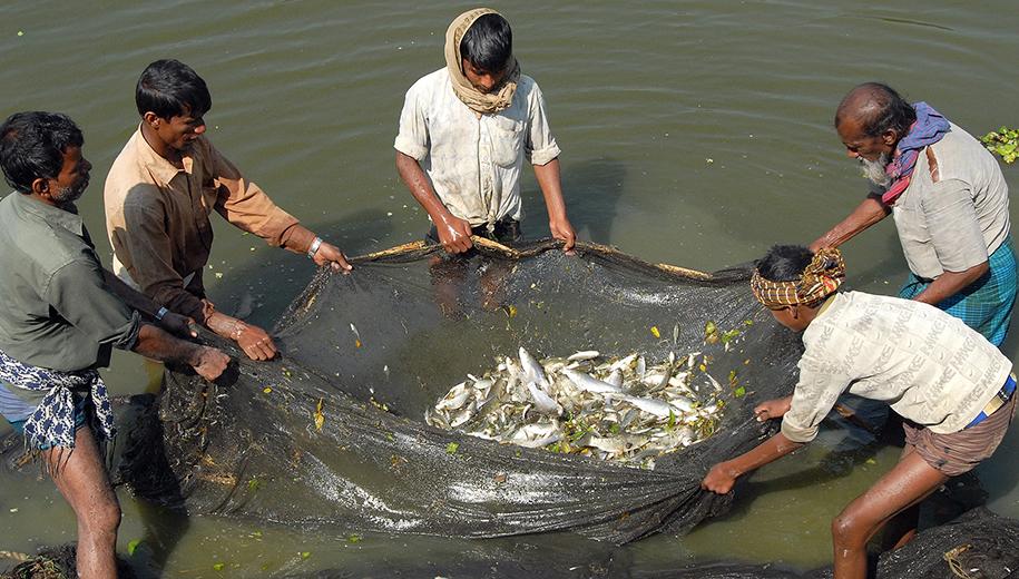 Bangladesh-main