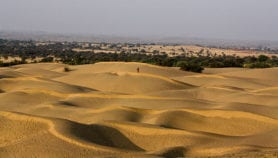 CoP14 on desertification tackles 'land-drought nexus'