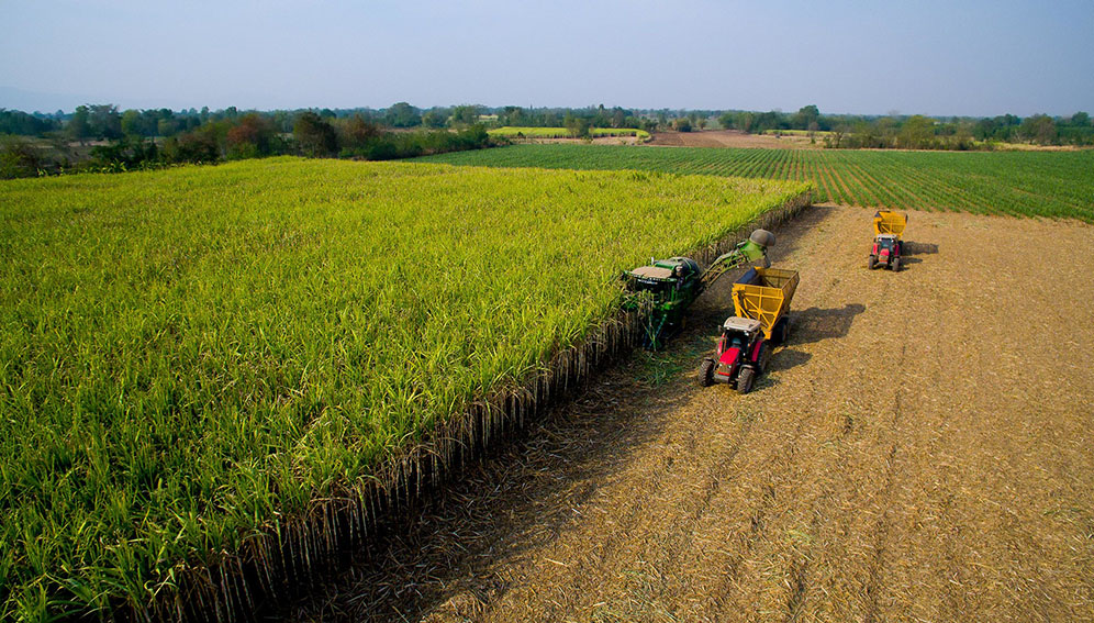 Disruptive Technologies Transform Asian Agriculture Asia Pacific