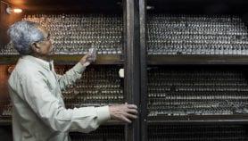 Platform to push safer antibiotic manufacture in India
