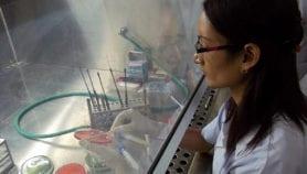 Clampdown in Indian Kashmir halts scientific work