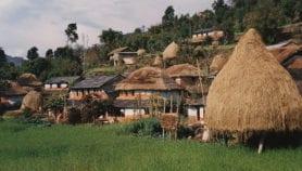 Hygienic housing key to eliminating kala-azar