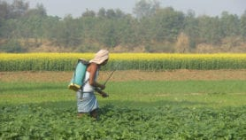 India weeds out 27 highly toxic pesticides