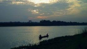 Ancient trees reveal Brahmaputra mega-dam risks