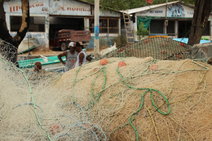 Fishing nets rest in piles along the riverbank. The men of the community have a licence to fish and sell their catch locally. But there is no formal recognition of the women who gather molluscs from the mangrove.