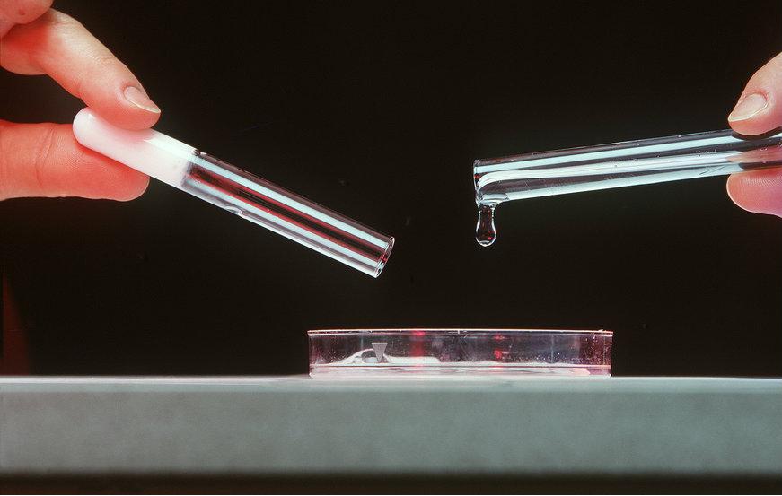 Petri dish health 2