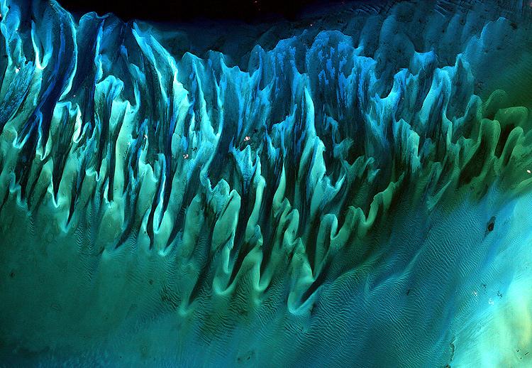 Seaweed beds NASA