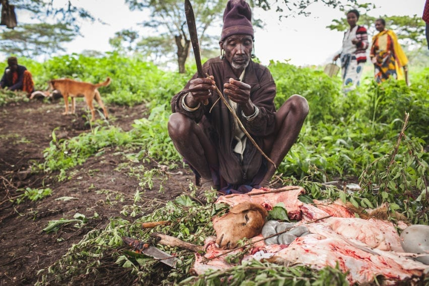 The slaughter of livestock at markets is part of a cycle of disease transmission involving humans, livestock and local dogs. Body parts contaminated with parasites are disposed of on nearby land. Dogs then eat this flesh and can carry parasites to households and other markets