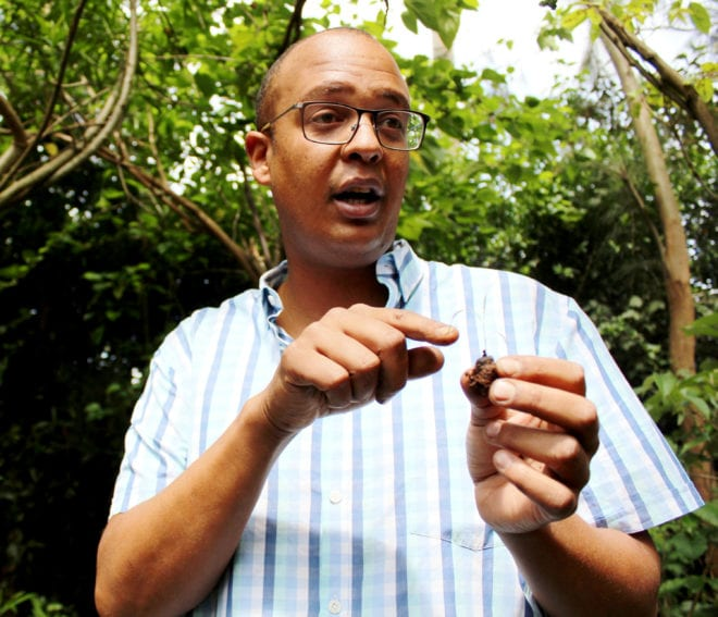 Teddy Kinyanjui shows Maasai grass specie sprout. He says that grass seed bank is diminishing due to overgrazing, especially in Northern Kenya. With his seed balls innovation, he hopes to help restore grass cover.