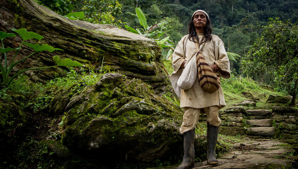 Indigenous people and carbon
