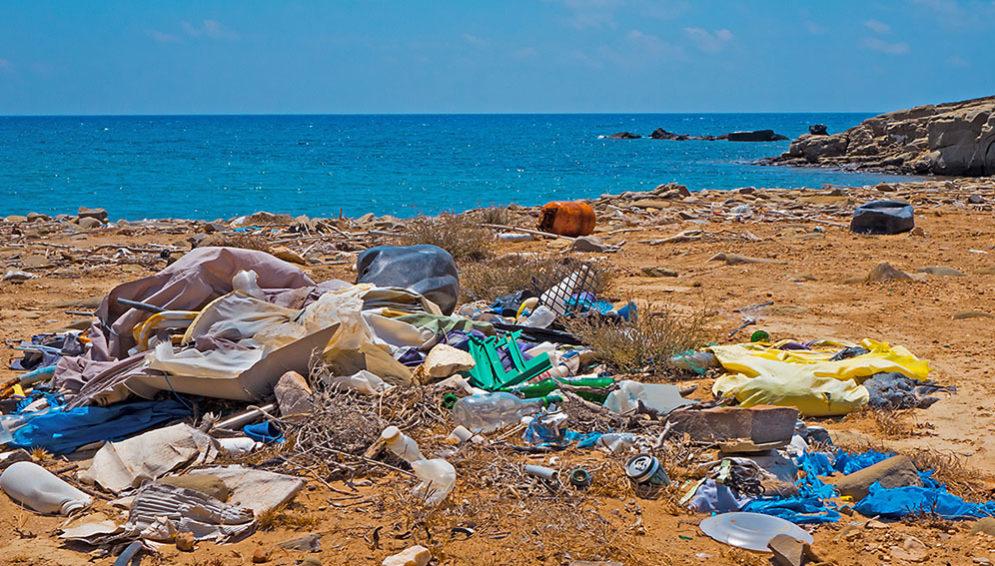 Microplastics article - Main
