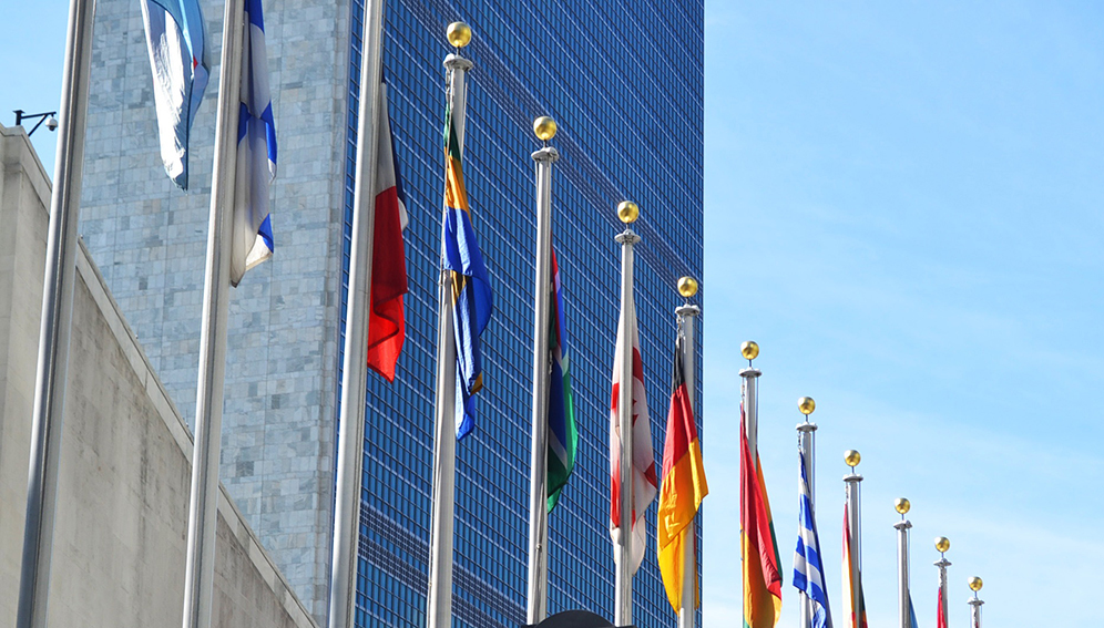Q&A: Most SDGs 'going into reverse' – UN expert group member