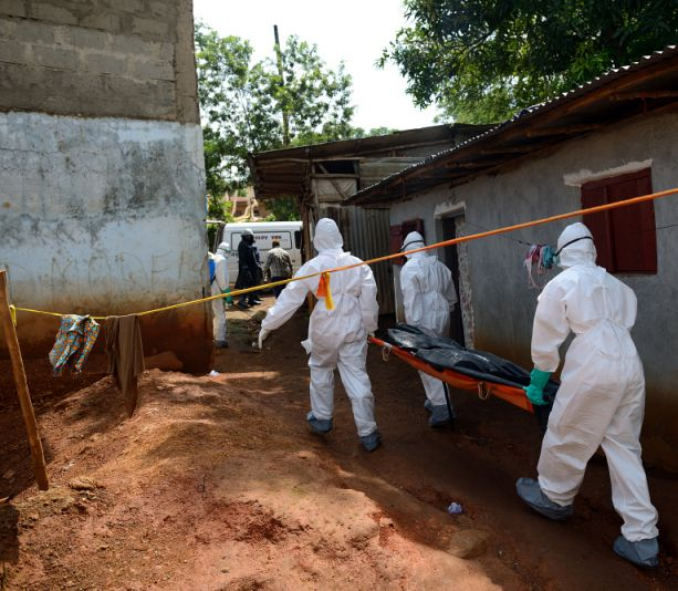 DFID makes the right noises over Ebola lessons