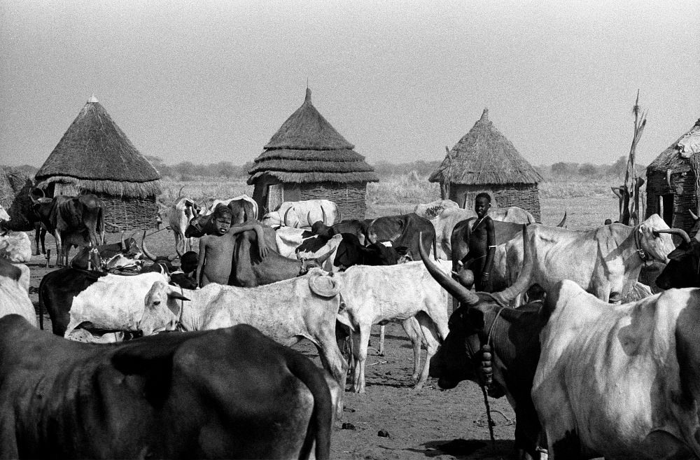 Ethiopian herders get automated weather stations