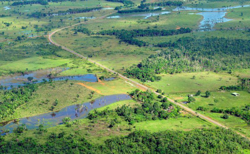 Amazon rainforest resettlement