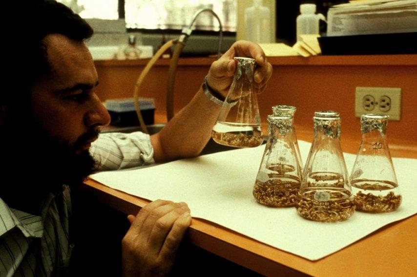 Biotech and seeds _ IRRI (FILEminimizer).jpg