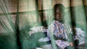 Bed net plan for underfed kids curbs malaria deaths