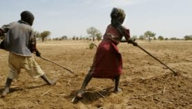Extreme weather set to foil Sahel knowledge