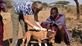 Q&A: Rabies pioneer advised to take up typing