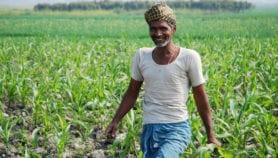 UN urged to demand free access to crop data
