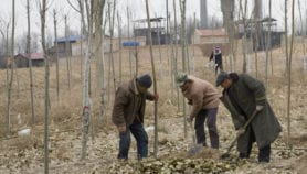 Better land care may be worth US$1.4 trillion a year