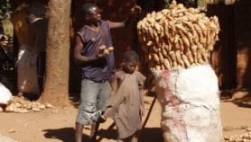 African hunger policy silent on climate risks