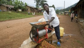 Mixed approach holds promise to African smallholders