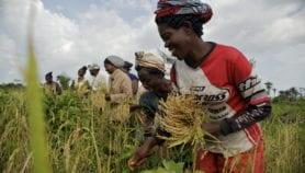 Focus on Gender: The dangers of digitising land data