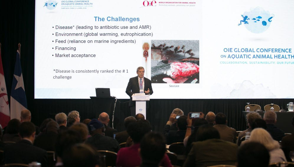 Global Conference on Aquatic Animal Health by OEI.jpg