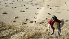 Drylands face 4°C warming under Paris Agreement goal