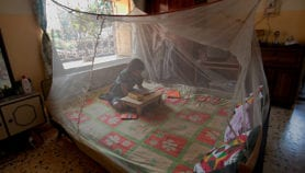 Project that mails antimalarial boxes to start spin-off