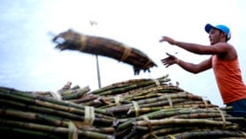 Method that cuts sugarcane emissions gets global prize