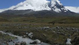Glacier retreat upsets river species balance