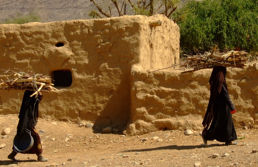 Yemen's forests another casualty of war amid fuel crisis