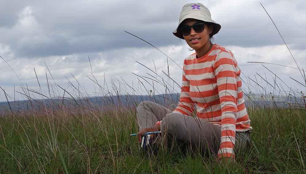 Global tree pledge frenzy threatens ancient grasslands