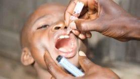 Can new polio vaccine avert nightmare of resurgence?