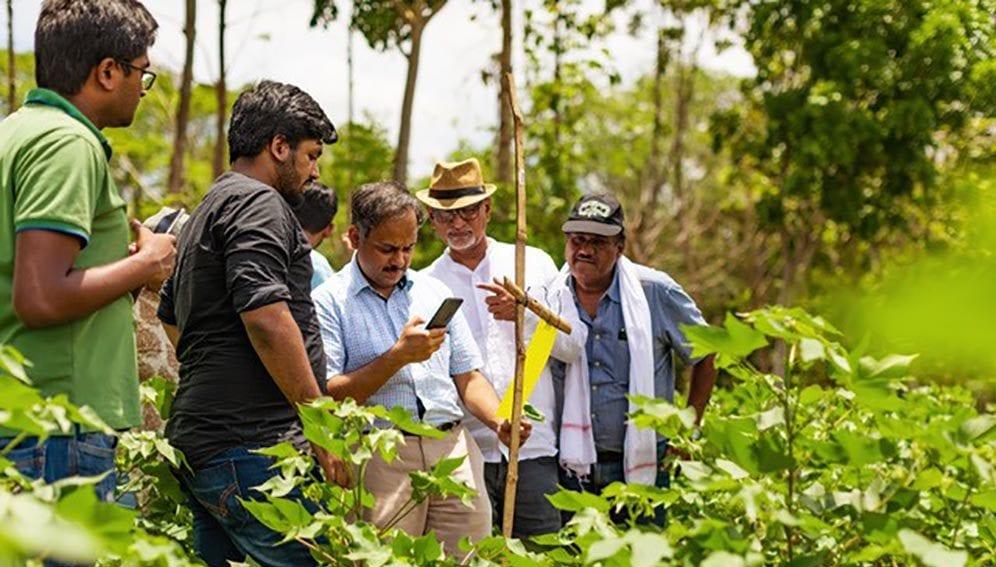 Wadwani in the field 1 - Main