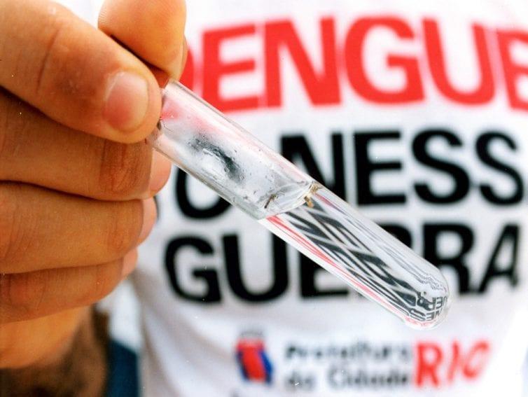 dengue zika1