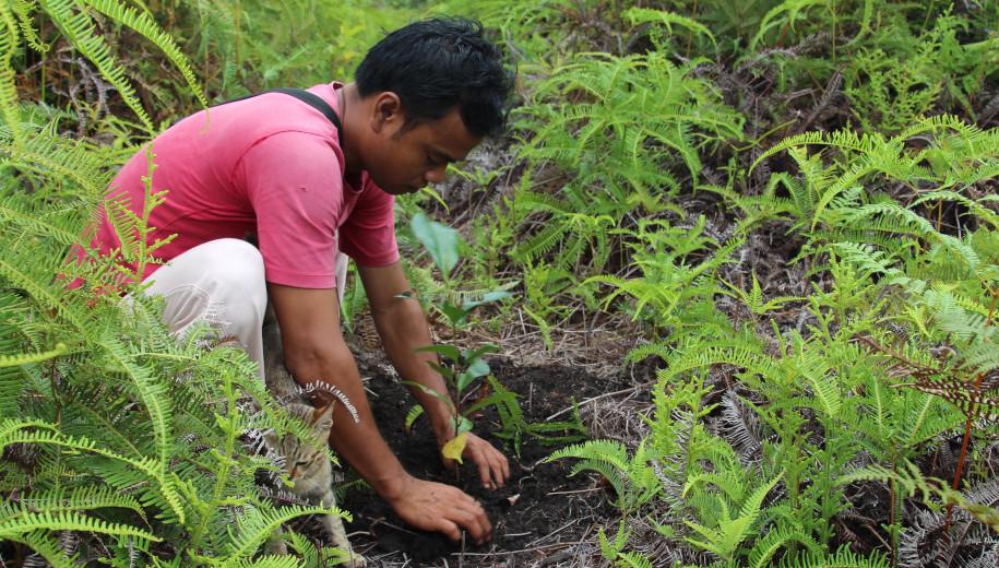 Human footprint shows extinction, climate change steps