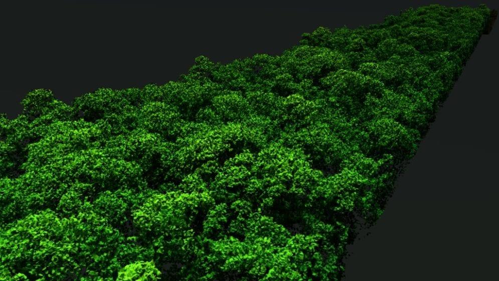 LiDAR Amazonas