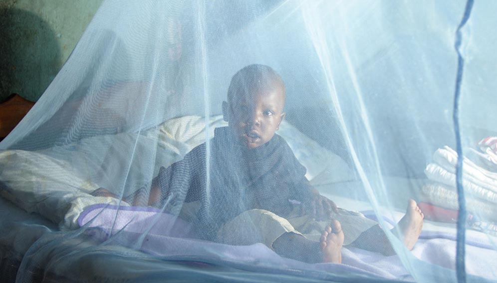 WHO urges focus on pregnant women, children to wipe out malaria