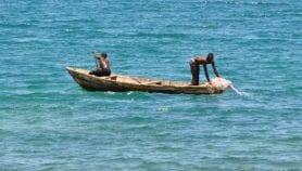 'Eating lake fish is damaging our eyes'