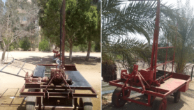 حصادة مصرية لثمار الديزل